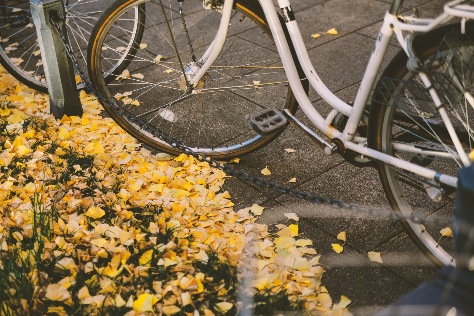 ママチャリに限界を感じた18歳。クロスバイクを買う。